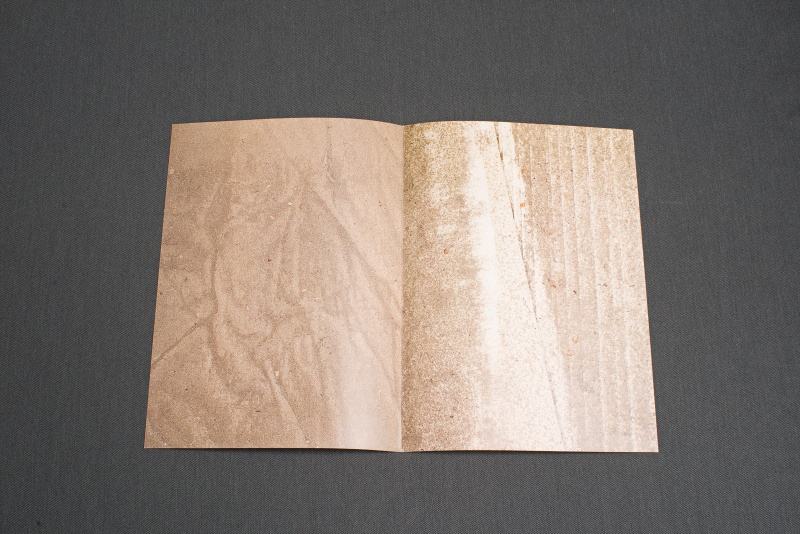 DustCover, 2012