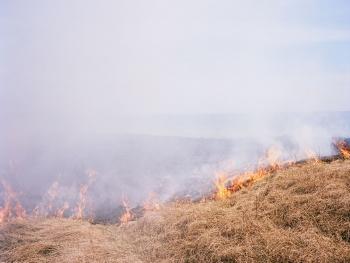 Fire, 2015